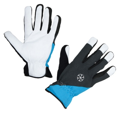 Wintehandschuh Polartex