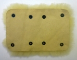 AS Lambskin front or back