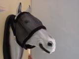 Fliegenmaske ohne Ohren